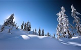 Winter snow beautiful scenery HD wallpapers #19