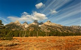 USA Grand Teton National Park nature landscape HD wallpapers #8