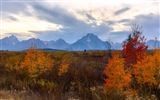 USA Grand Teton National Park nature landscape HD wallpapers #17
